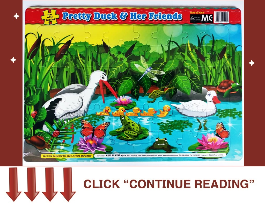 FUN WITH PUZZLES-PRETTY DUCK&HER FRIENDS