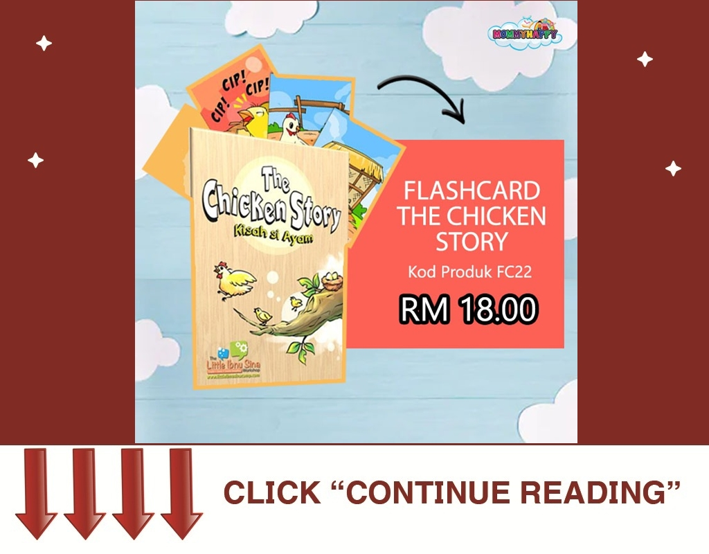 FLASHCARD THE CHICKEN STORY